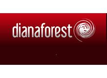 Трехполосная паркетная доска Diana Forest