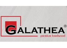 Инженерная доска Galathea (Галатея)
